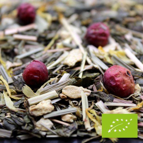 Thé vert Canneberge gingembre - BIO