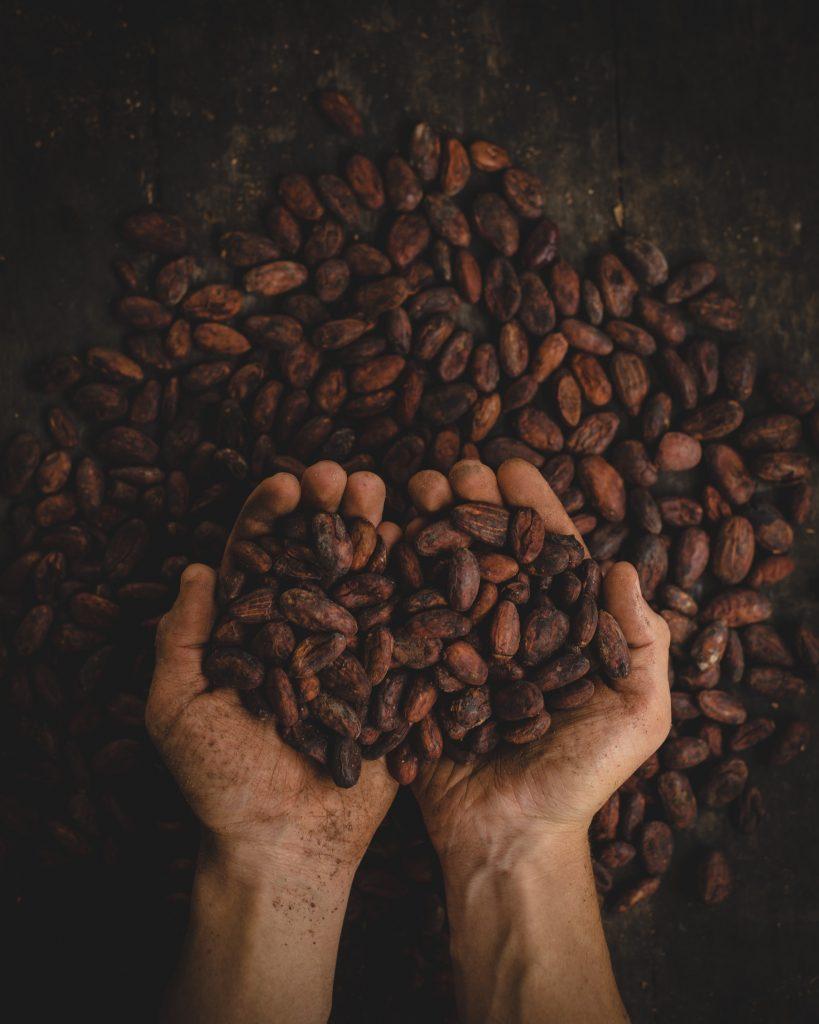 Bar à chocolat Cacao Mains